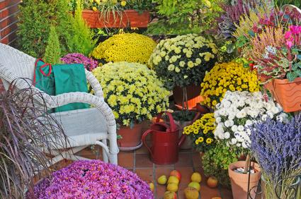 Podzimní dekorace - listopadky
