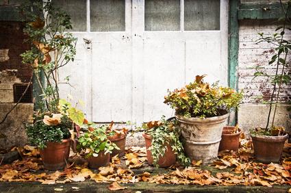 Podzimní terasa