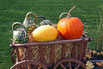 Podzimní dekorace - dýně na vozíku