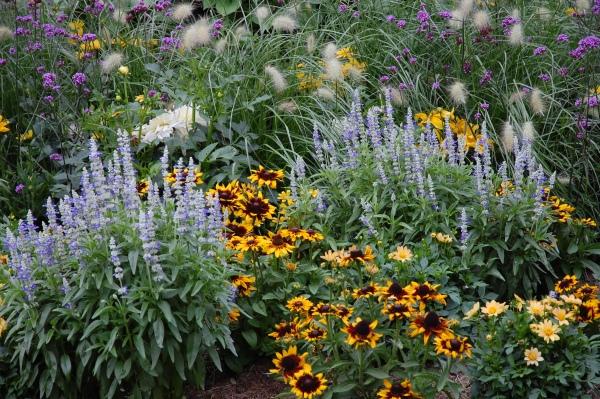 Květiny našich babiček 1